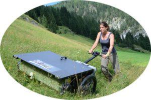 Bild: Frau die den Rasen mäht